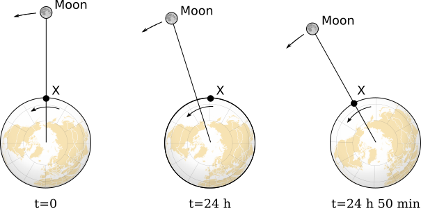 The lunar day is longer than 24 hours since the moon has travelled around the earth in the time that the earth made a full rotation. After a further 50 minutes the moon is above the starting point again.