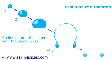 How rain drops and their shapes evolve
